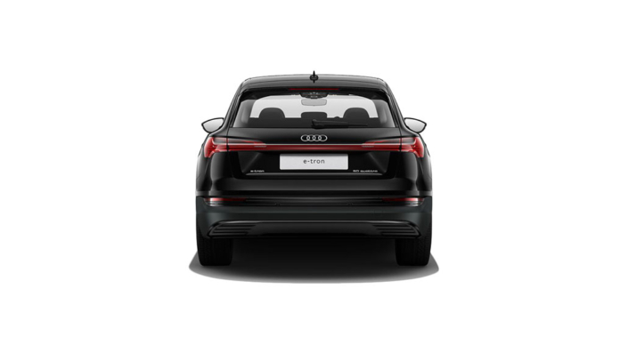 Audi e-tron Leasing Business_4